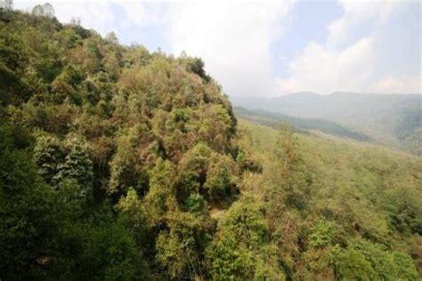 urige wandlen nepal reisebericht quot ghandruk nach tadapani quot