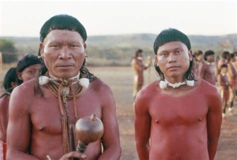 amazon tribe mystery of amazonian tribe s head shapes solved xav 225 nte
