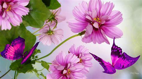 imagenes de rosas lindas preciosas de fondo de pantalla imagenes de imagenes bonitas para fondo de pantalla para celular