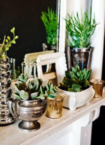 pretty indoor plants la casa de victoria smith una blogger y estilista en san