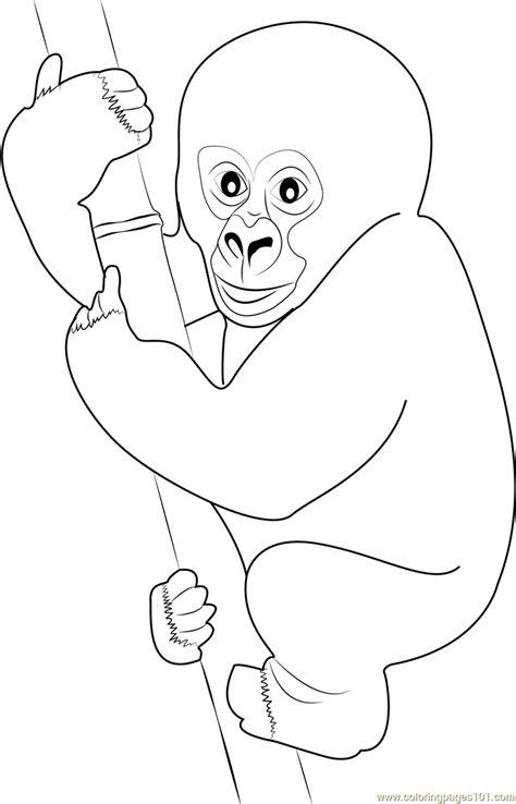 baby gorilla coloring page cute gorilla baby coloring page free gorilla coloring