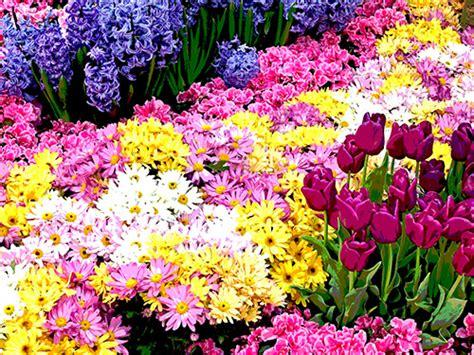 primavera fiori diy primavera fai da te la ghirlanda di fiori pinkitalia