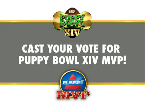 animal planet puppy live puppy bowl xiv mvp poll puppy bowl animal planet