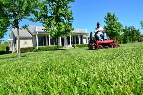 lawn mowing tips   healthy lawn diy
