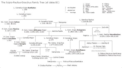 ottoman emperors family tree scipio paullus gracchus family tree wikis the full wiki