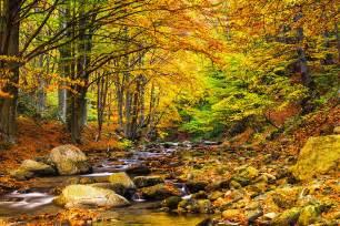 Landscape Pictures Autumn Autumn Landscape By Evgeni Dinev