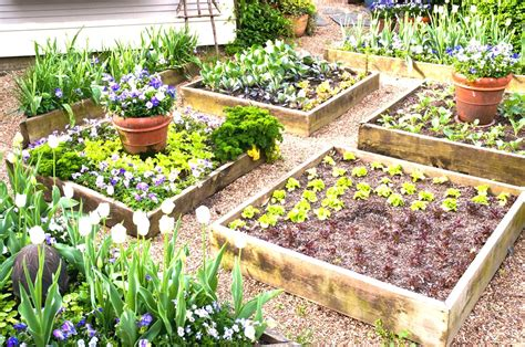 Raised Vegetable Garden Design Ideas Raised Vegetable Garden Design Ideas Maybehip