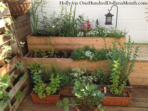 small space container gardens garden apartment in harlem new york one hundred dollars