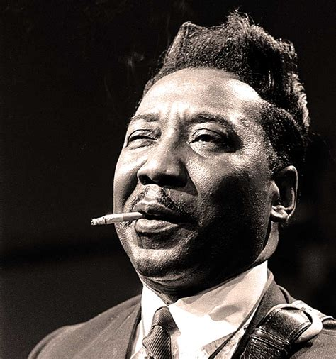 muddy waters muddy waters in concert at cw post college 1977