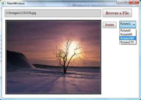 wpf layout transform zoom image viewer in wpf