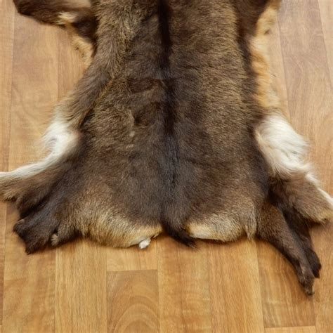 skin rug for sale south pacific chamois tanned skin taxidermy rug for sale 17461 the taxidermy store
