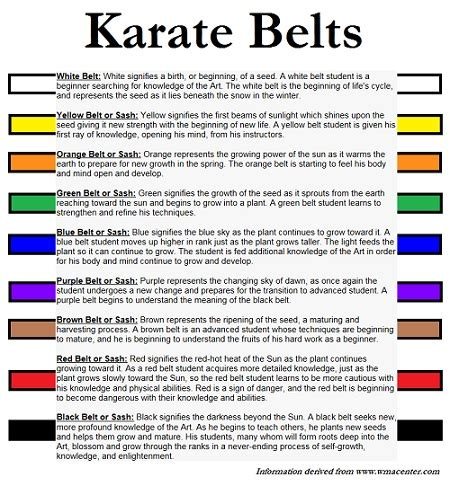 belt colors in karate letter l is for library week is next park prep