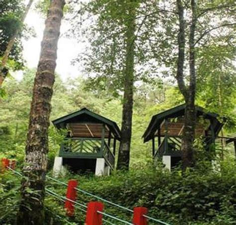 botanic siege kohima botanical garden in kohima nagaland