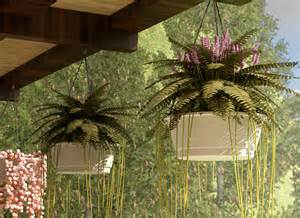 hanging plants for patio how to choose outdoor hanging plants 7 steps