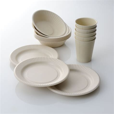 Cup On The Plate disposable plates and cups www pixshark images