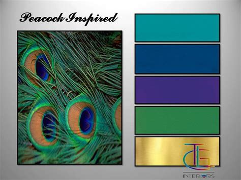 color peacock 17 best ideas about peacock colors on purple