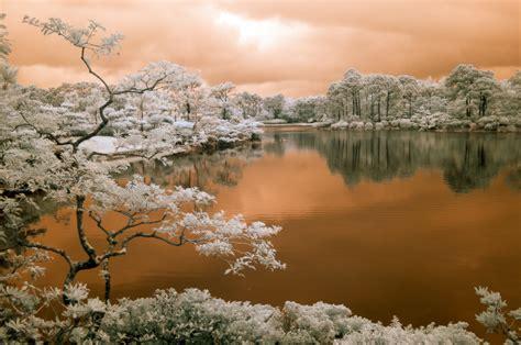 Landscape Photography In Florida Infrared Dimitri Sagatov Dimitri Sagatov