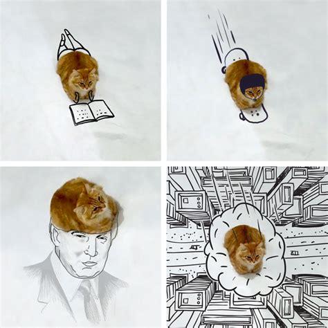 doodle cat doodle challenge transforms ordinary cat photo into