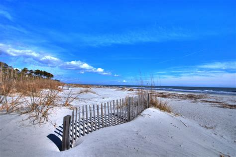 friendly beaches in sc 11 amazing beaches every southerner should travel to gafollowers