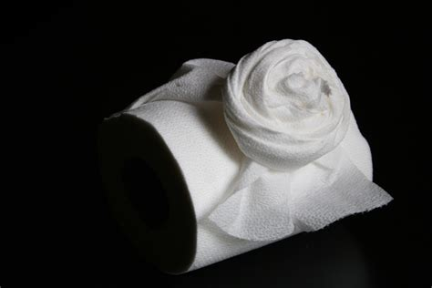 How To Make Toilet Paper Roses - pay it forward my s jar