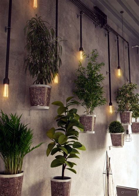 perfect wall hanging plant decor ideas