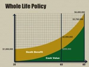 whole life policy what s the best life insurance for physicians just the