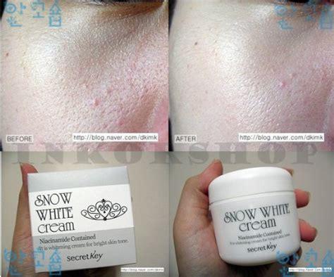 Secret Key Snow White 50g Murah secret key snow white whitening mask for bright skin tone 50 g buy