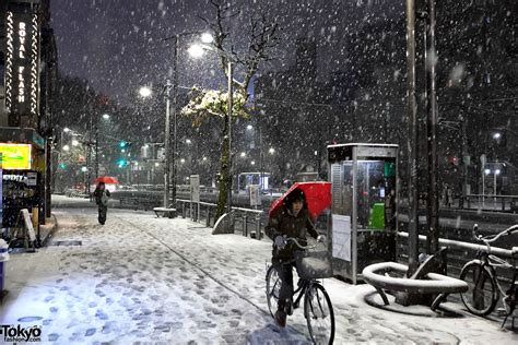 Snowing Oversized T Shirt Colorbox snowing in tokyo tokyo fashion news