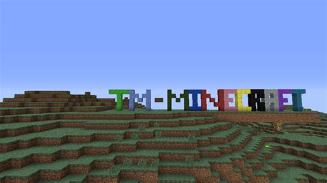 tm minecraft home