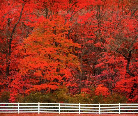 nguyệt san việt nam america the beautiful in autumn peak