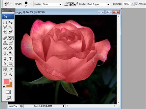 replace color in photoshop how to replace colors in photoshop 2 steps with pictures