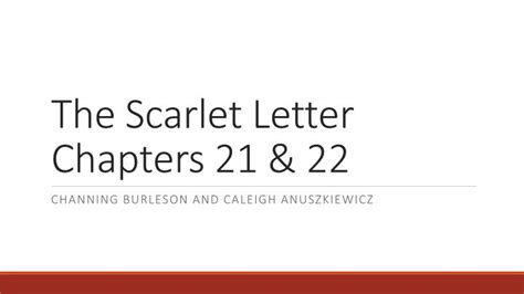 theme of the scarlet letter in chapter 24 the scarlet letter chapter 22 ppt the scarlet letter
