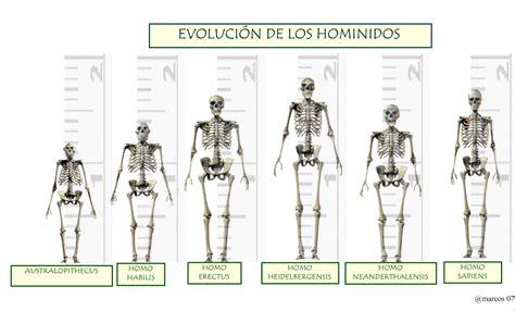 los origenes del fundamentalismo 848310945x diarios de v 2 0 evoluci 243 n de los hominidos en infograf 237 a