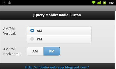 radio button html