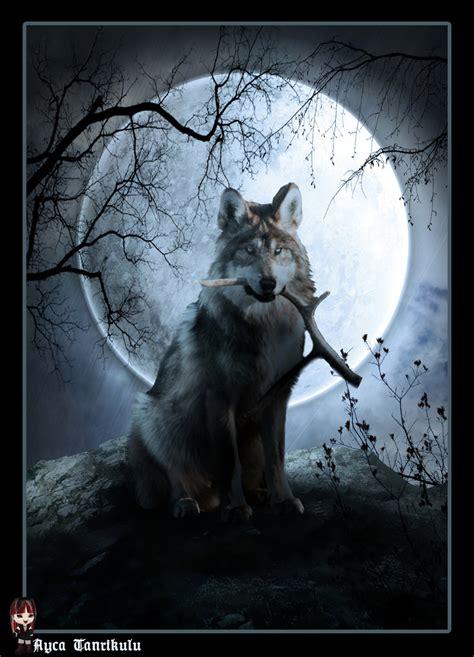 Wolf And Moon wolf moon by aycatanrikulu on deviantart