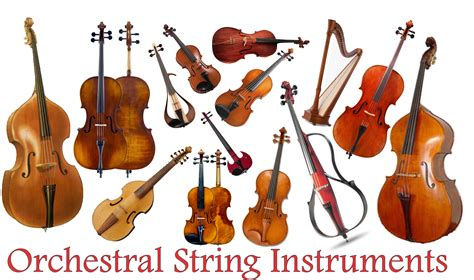 string section instruments orchestral string instruments absolute music of reno nv