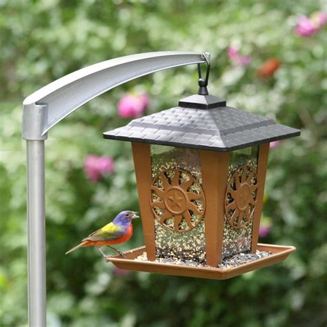 pole to hang bird feeder birdcage design ideas