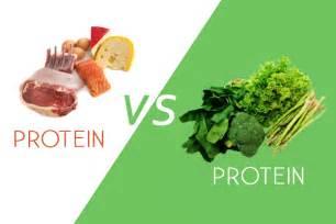 the perfect analogy for animal protein vs plant protein conscious nourishment