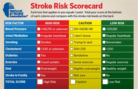 risk scorecard template faudzil stroke risk factors