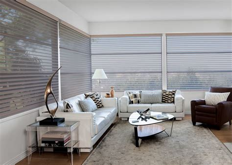 shades that let light in but keep privacy 71 best sheer shadings images on pinterest sheet