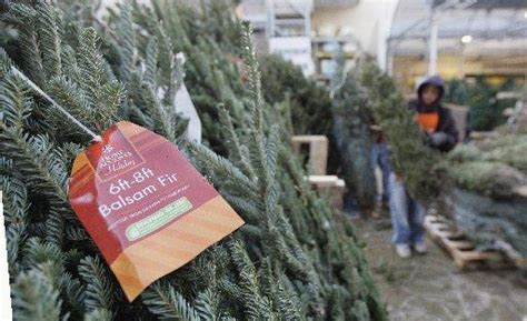 awesome picture of does home depot sell real christmas
