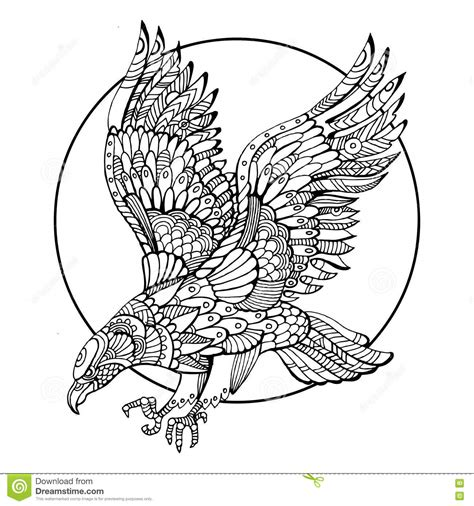 eagle bird coloring book for adults vector stock vector