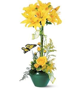 Gold Garden Waterbury Ct by Topiary In Waterbury Ct The Orchid Florist