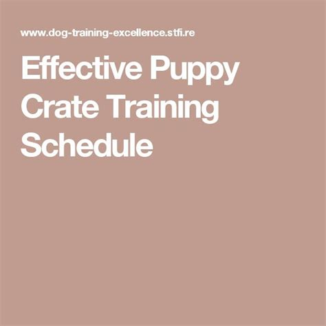 puppy crate schedule 1000 ideas about puppy schedule on puppy crate puppy schedule