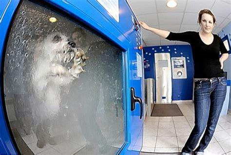 Can I Wash Mat In The Washing Machine by O Mat Automatic Washing Vending Machine