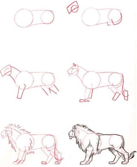how to do easy doodle how to draw easy animals step by step image guide