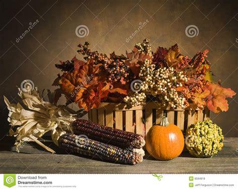 autumn  life stock image image  gourds foliage