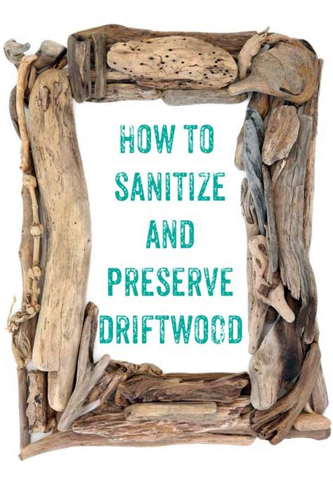 driftwood cleaning and sanitizing method