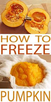 how to preserve pumpkins for freezing pumpkin made easy how to freeze pumpkin
