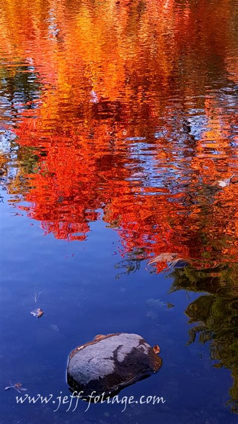 color reflections vermont fall foliage gallery